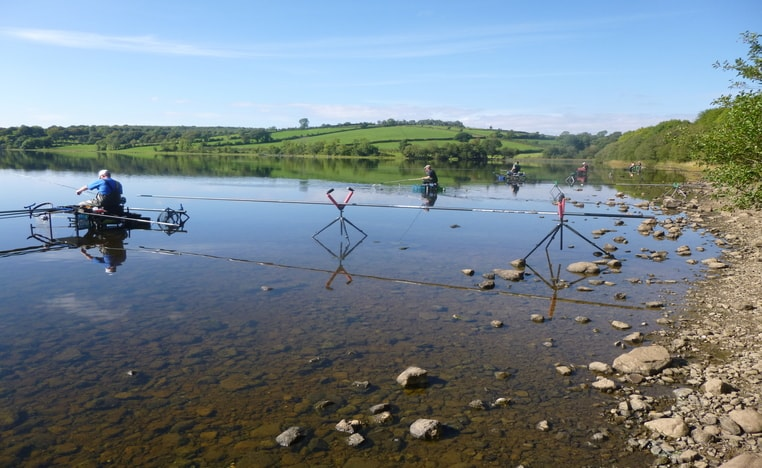 Bream, Roach, Pike, Tench, Perch and Hybrid Fishing